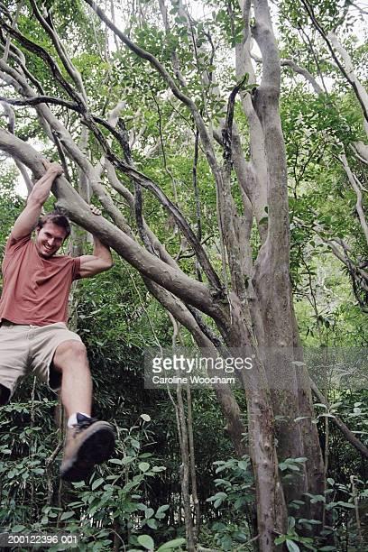 man hanging from tree branch, smiling - schommelen bungelen stockfoto's en -beelden