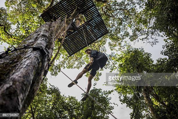 Man hanging from zip line platform in tree, Ban Nongluang, Champassak province, Paksong, Laos