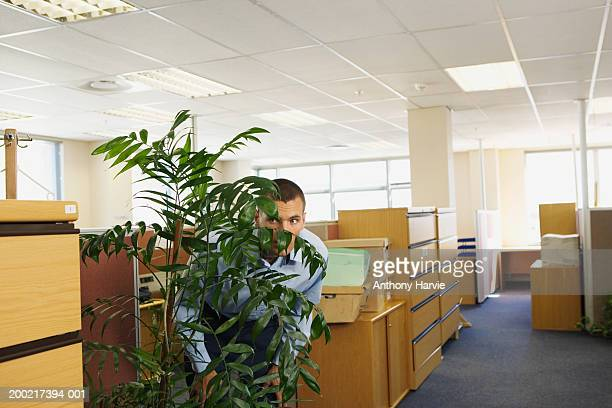 man hiding behind plant in office looking through foliage - part of a series stock pictures, royalty-free photos & images