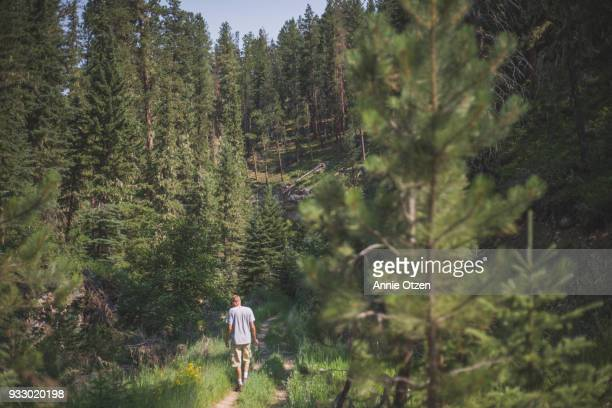 man hikes in western south dakota - black hills stock photos and pictures