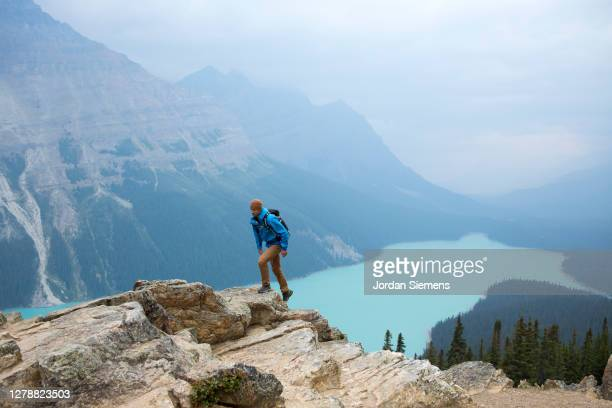 a man hiking above peyto lake in alberta. - blue jacket stock pictures, royalty-free photos & images