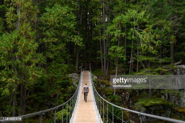 man hiking across a suspension bridge to the forest - whistler british columbia stock pictures, royalty-free photos & images