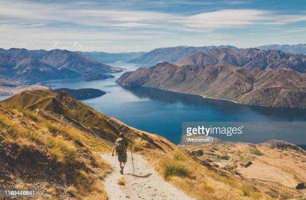 man hiking at roys peak, lake wanaka, new zealand - new zealand bildbanksfoton och bilder