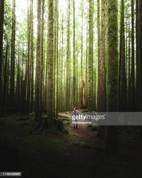 man hiking in british columbia - tall high stock pictures, royalty-free photos & images
