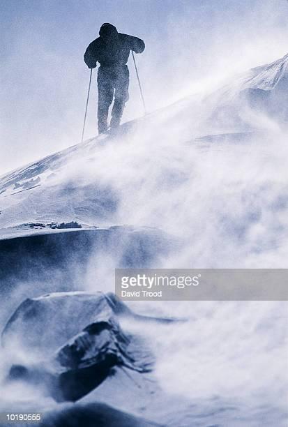 man hiking in snow storm, rear view - alleen één man stockfoto's en -beelden