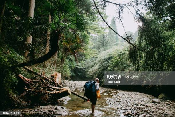 Man hiking in stream in lush green forest with palm tree, Japan