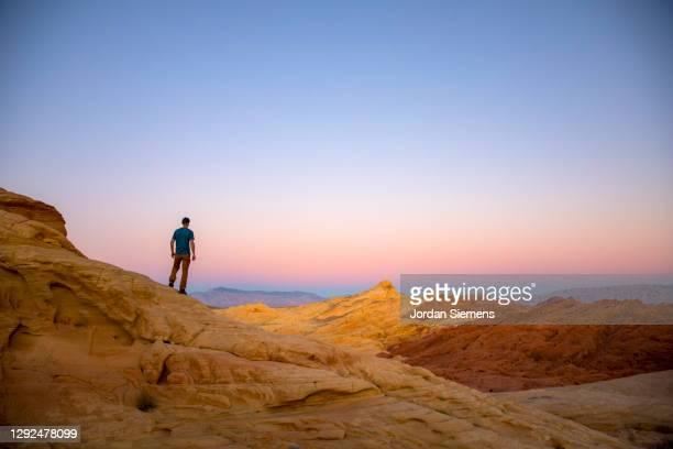 a man hiking in the red rocky desert - nevada stock-fotos und bilder