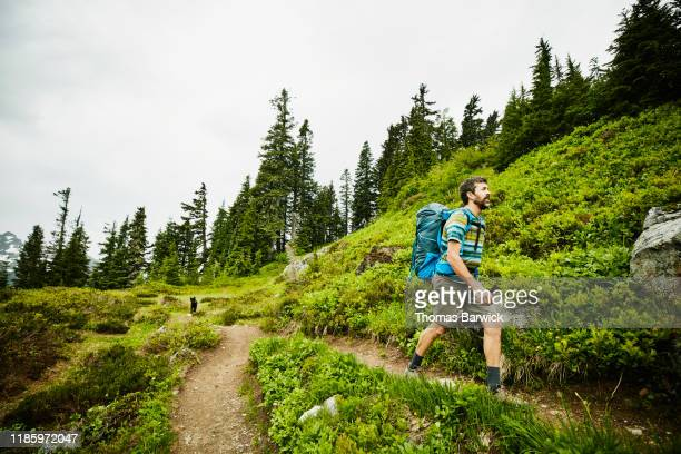 man hiking on mountain trail - einzelner mann über 40 stock-fotos und bilder