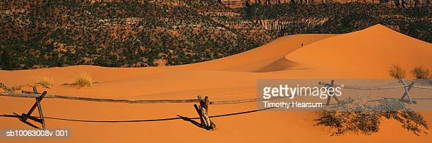 man hiking sand dunes, fence in foreground - timothy hearsum stock photos and pictures