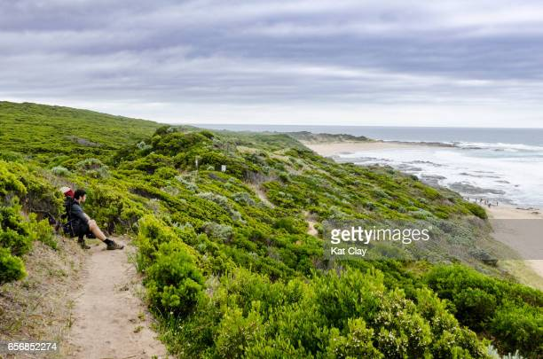 man hiking the great ocean walk - victoria australia stock pictures, royalty-free photos & images