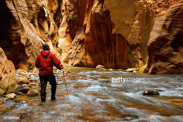 man hiking the narrows - zion national park stock pictures, royalty-free photos & images