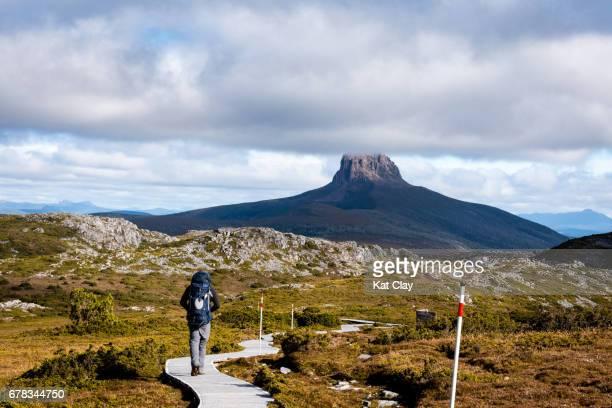 Man hiking the Overland Track