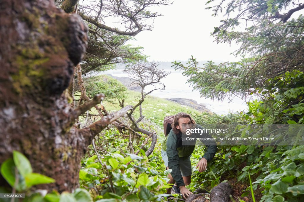 Man hiking up forest trail near ocean : Stock Photo
