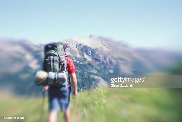 Man hiking with backpack, rear view (zoom effect)