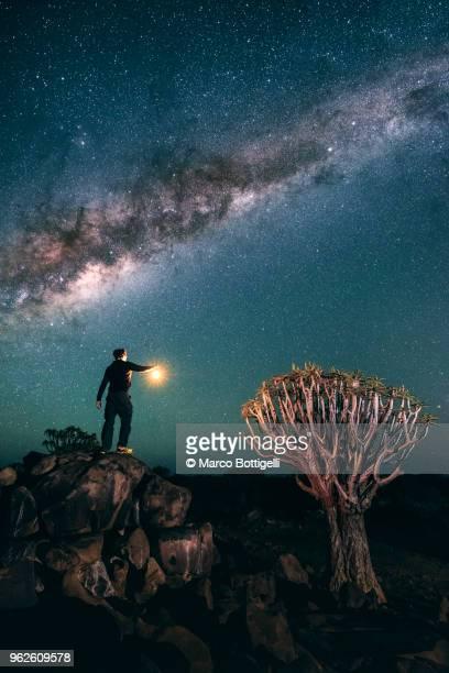 Man holding a lantern illuminating a quiver tree