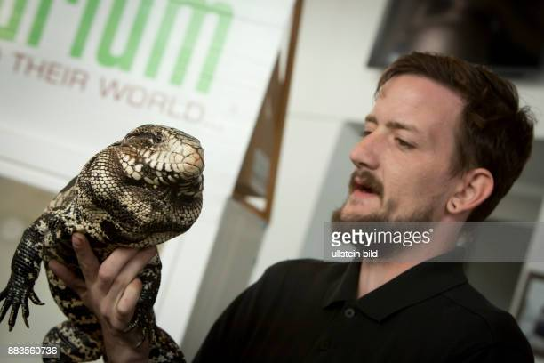 Man holding an Argentine black and white tegu at the EXPO day at Petco park San Diego