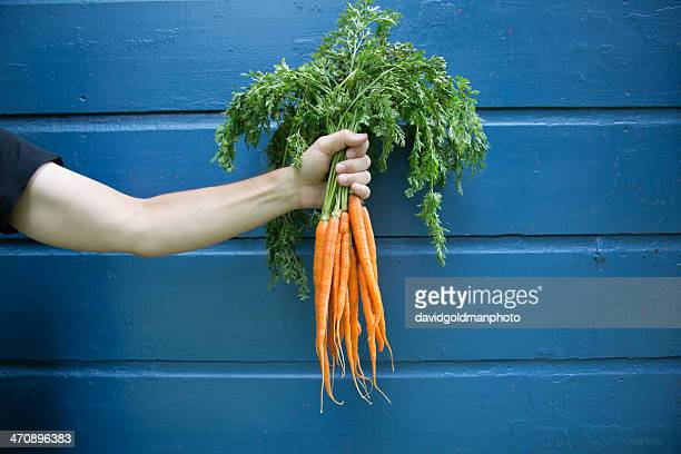 Man holding bunch of organic carrots