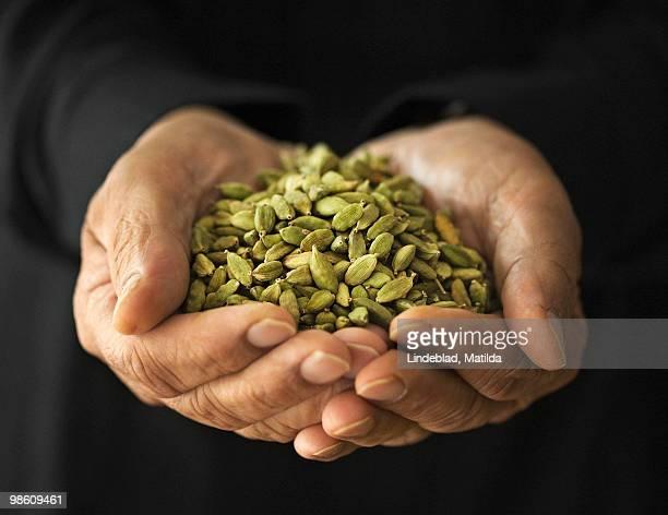 Man holding cardamom seeds, Sweden.