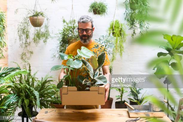 man holding cardboard box with new plants for his terrace. - 趣味 ストックフォトと画像