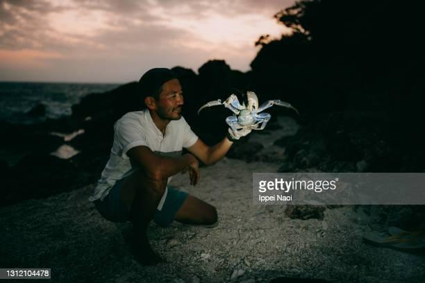 man holding coconut crab on beach, okinawa, japan - 自然保護区 ストックフォトと画像