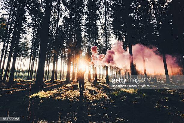Man Holding Distress Flare In Forest
