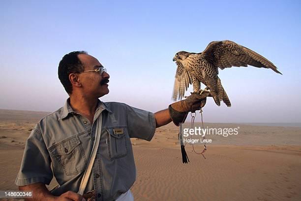 Man holding falcon at Falconry Exhibition (falco biarmicus)at Al Maha Desert Resort.