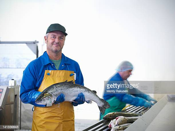 Man holding fresh hand-reared Scottish salmon in factory of  fish farm