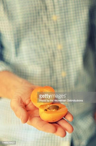 Man holding halfs apricot