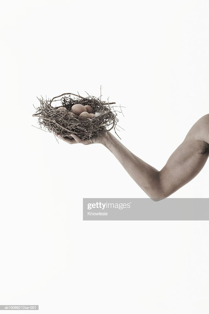 Man holding nest with eggs in hand, view of arm, studio shot : Stockfoto