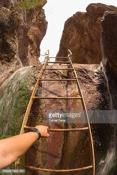 Man holding onto ladder, close-up