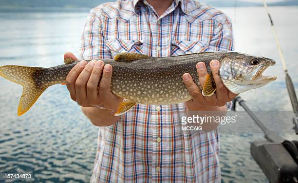 a man holding out a trout that he caught - jackson hole stock pictures, royalty-free photos & images
