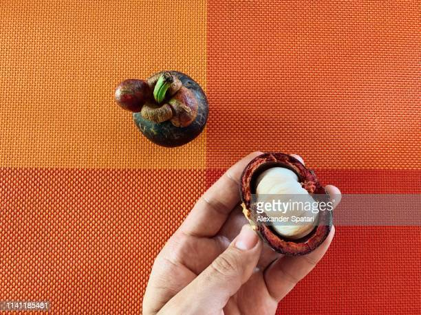 Man holding peeled mangosteen fruit in hand