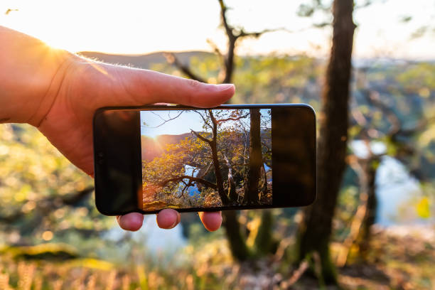 Man holding phone with landscape photo on screen