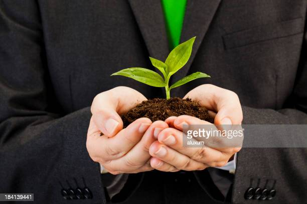 Man holding small plant in dirt in his hands