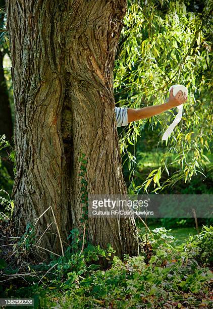 man holding toilet paper behind tree - funny toilet paper stock pictures, royalty-free photos & images