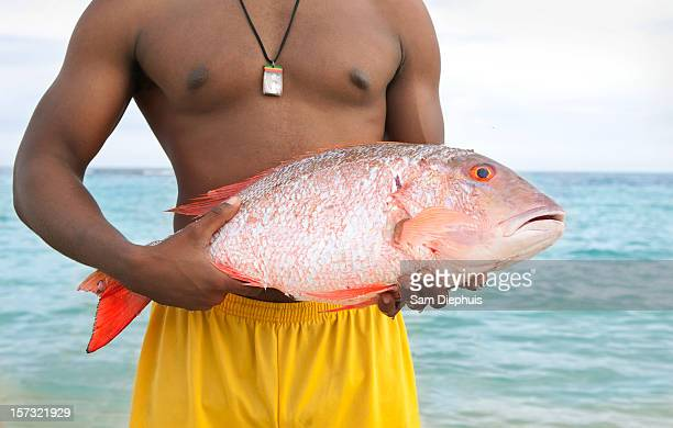 man holding tropical fish - kingston jamaica stock pictures, royalty-free photos & images