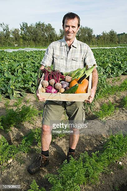 man holding wooden create of freshly farmed vegetables - esher stock pictures, royalty-free photos & images