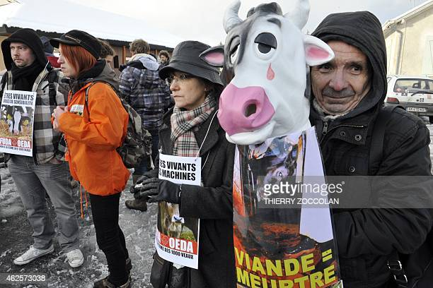 "Man holds a cow mask during a protest against the ""Ferme des 1,000 veaux"" organized by the animal rights group ""Oui a l'etourdissement dans les..."