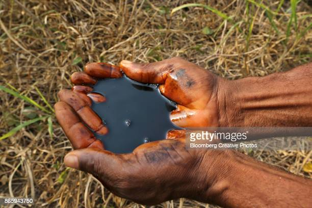 A man holds a pool of black oil in the palm of his hands