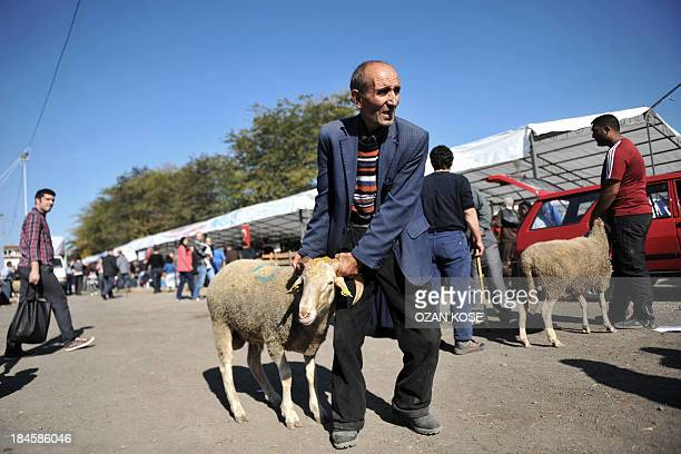 A man holds a ram that will be sacrificed for the Muslim holiday of Eid alAdha at a market in Istanbul on October 14 2013 Muslims across the world...