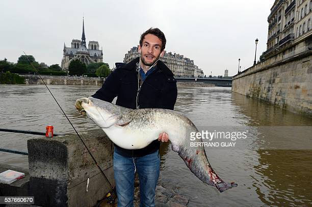 A man holds a Silurus that he fished on the flooded banks of the River Seinein Paris on June 2 2016 after heavy rainfalls hit the capital Torrential...