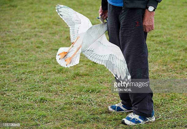 A man holds a small seagull kite at the 25th annual Bristol International Kite Festival on the Ashton Court Estate near Bristol on September 4 2011...