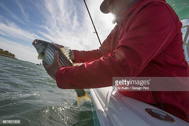 A man holds fish off the edge of a boat on the Atlantic coast