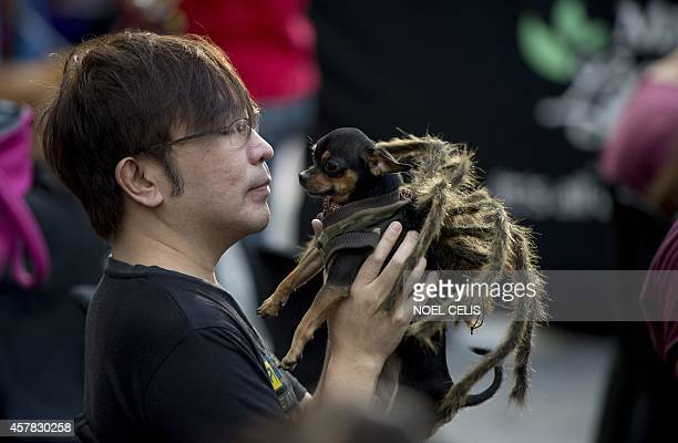 A man holds his dog dressed in a spider costume during the Cats and Dogs Halloween costume competition in Manila on October 25 2014 The annual...