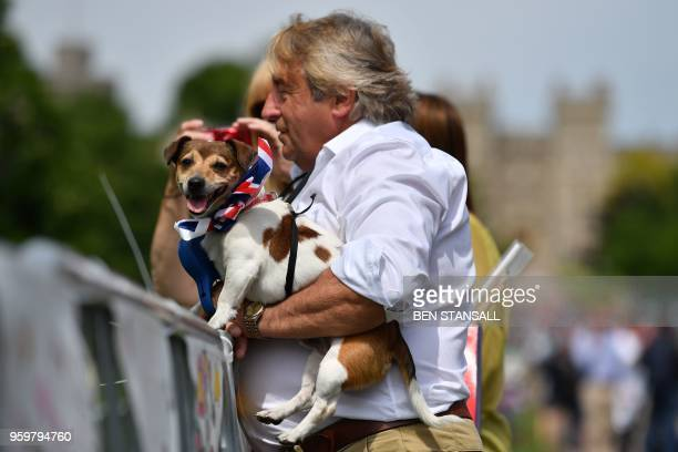 A man holds his dog wearing red white and blue Union colours on the Long Walk in Windsor on May 18 the day before the wedding Britain's Prince Harry...