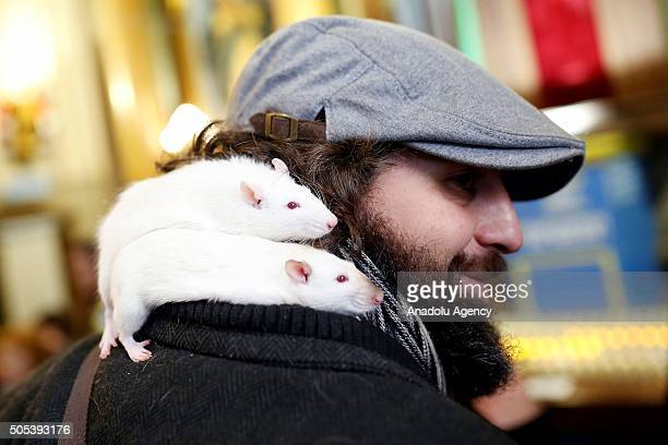 A man holds his pet mice in front of the San Anton Church in Madrid Spain on Saint Anthony's day dedicated to the animals by Spanish Christians on...