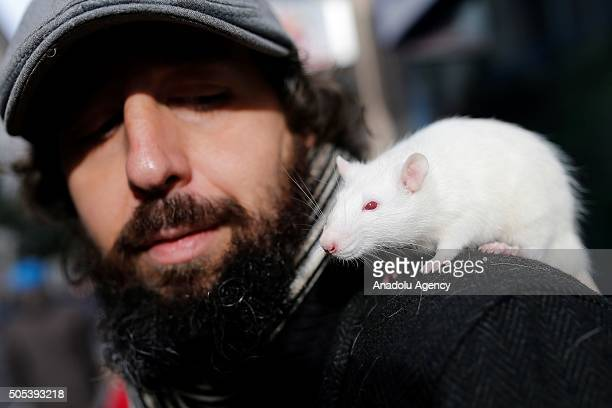 A man holds his pet mouse in front of the San Anton Church in Madrid Spain on Saint Anthony's day dedicated to the animals by Spanish Christians on...
