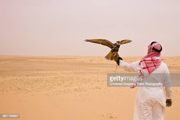 Man Holds Hunting Falcon in Desert