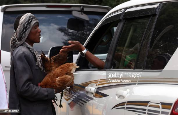 A man holds two chickens at the Sholla bazaar ahead of Easter celebrations in Addis Ababa Ethiopia on April 07 2018 Orthodox Christians fast for 55...