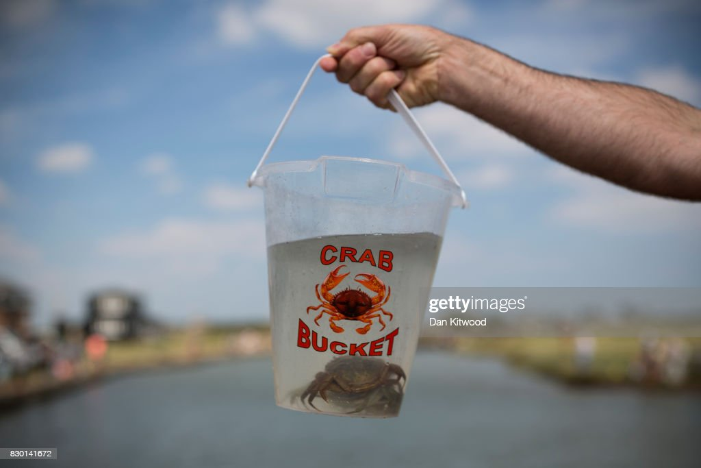 A man holds up a bucket of crabs as holiday makers enjoy fishing from a jetty on August 11, 2017 in Walberswick, England. Much of the country is expected to enjoy a sunny spell over the weekend after a period of unseasonably wet weather.